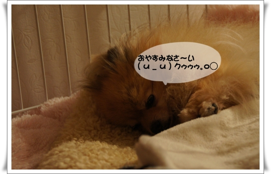 DSC03068_20120723200511.jpg