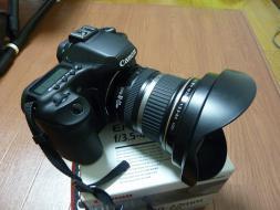 P1030317.jpg