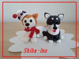 shiba-inu1.jpg
