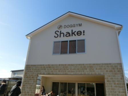 DOGGYM Shake!