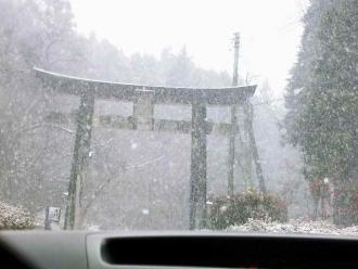 2013-12-13ゆかり 鳥居