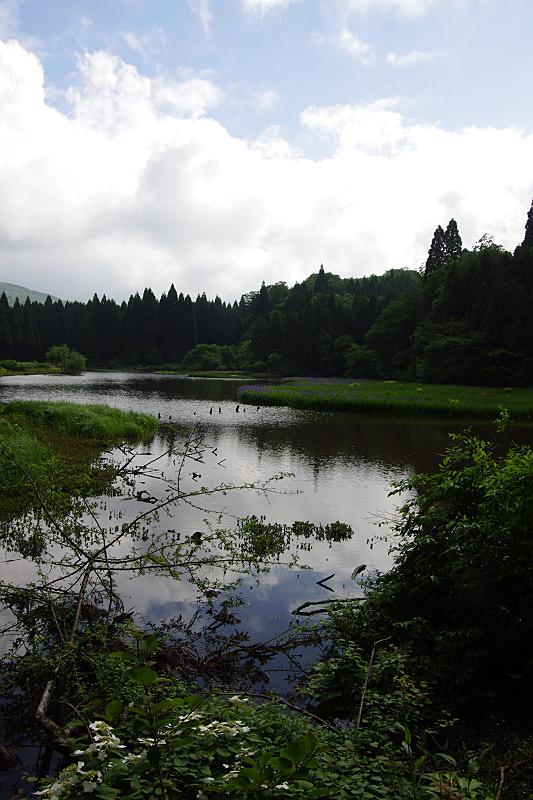 池の上に青空も覗く