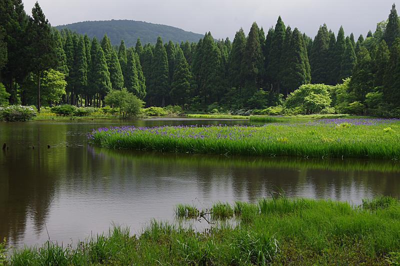 静かな湖面をしばし眺める