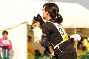 tokushimae 70611_R