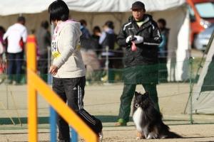 tokushimad 63111_R