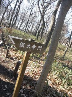 2013_01040180.jpg