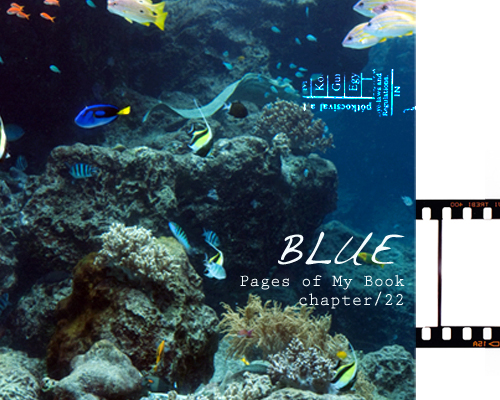 chapter22.jpg