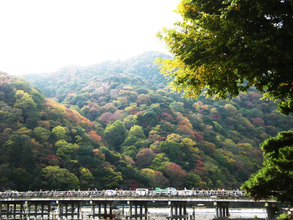 秋の嵐山 009