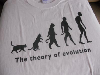 DF Tシャツ1