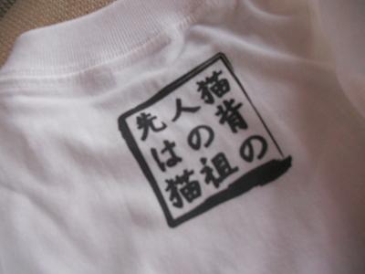 DF Tシャツ2