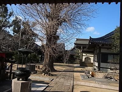 shukusho-RIMG1608.jpg