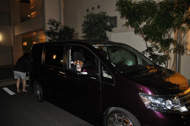 チョコとの男二人旅 北海道編1日目 007