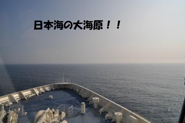 チョコとの男二人旅 北海道編2日目 002