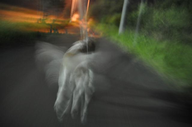 チョコとの男二人旅 北海道編3日目 016