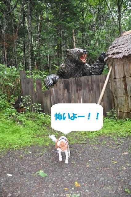 チョコとの男二人旅 北海道編3日目 082