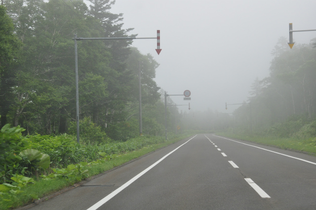 チョコとの男二人旅 北海道編4日目 153