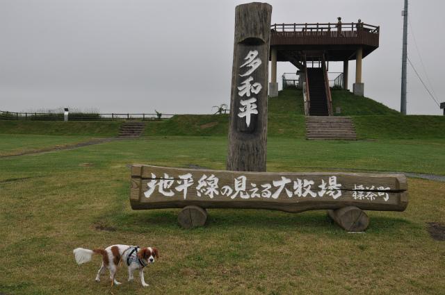 チョコとの男二人旅 北海道編5日目 001