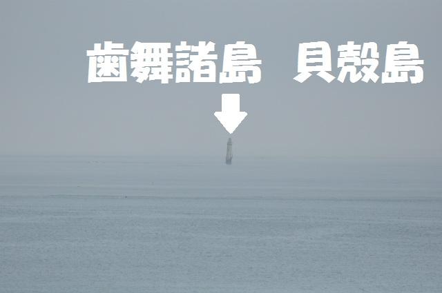 チョコとの男二人旅 北海道編5日目 160