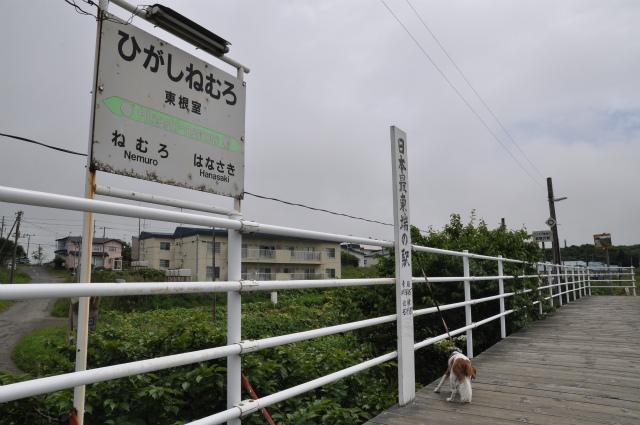 チョコとの男二人旅 北海道編5日目 101