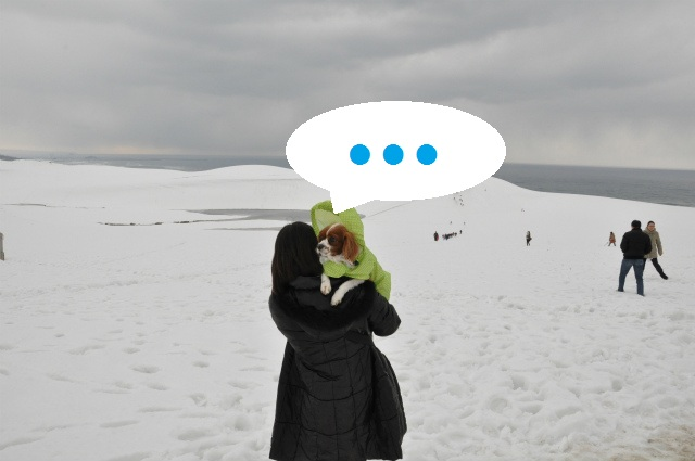 チョコはこりごり(+_+)・鳥取砂丘冬景色 076