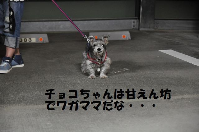 舞洲ベイエリア散歩 045