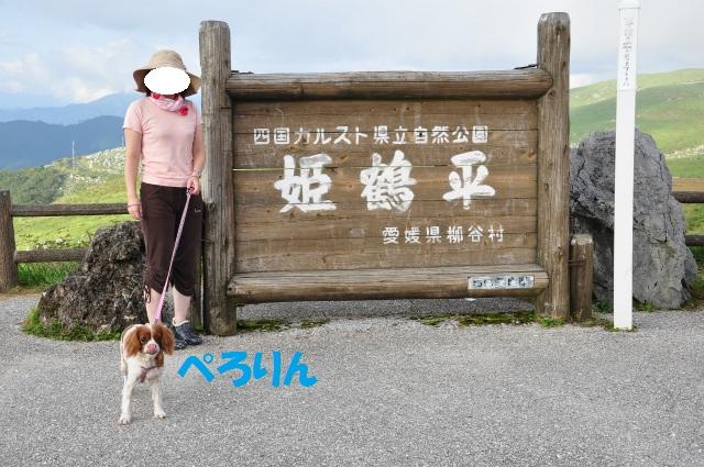 (^-^)チョコとの高知県行脚 083