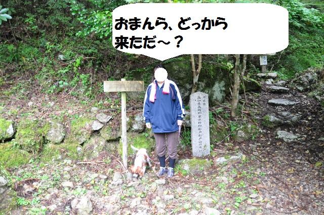 (^-^)チョコとの高知県行脚 167
