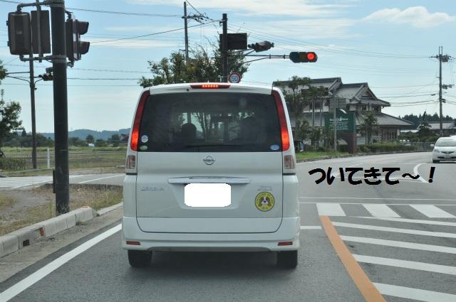 2012,10,13 ボンちゃんと滋賀県 075