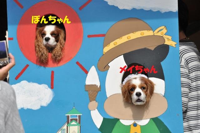 2012,10,13 ボンちゃんと滋賀県 064