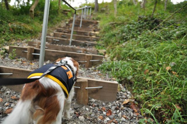 2012,10,13 ボンちゃんと滋賀県 141