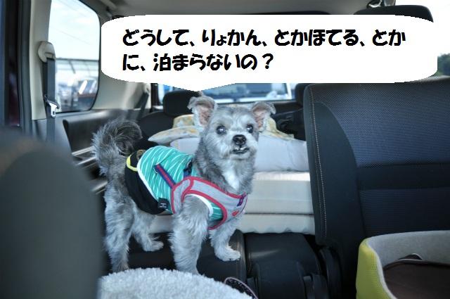 2012,10,20若狭車中泊 004
