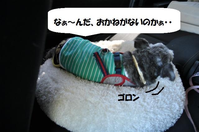 2012,10,20若狭車中泊 008