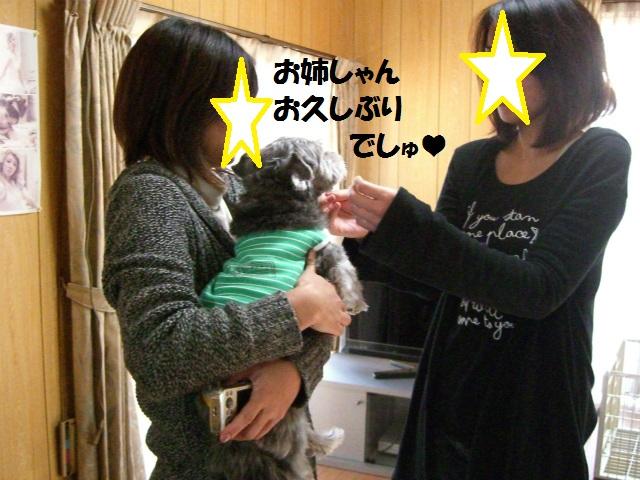 2012秋の信州 もみじ・星まつりの旅 111