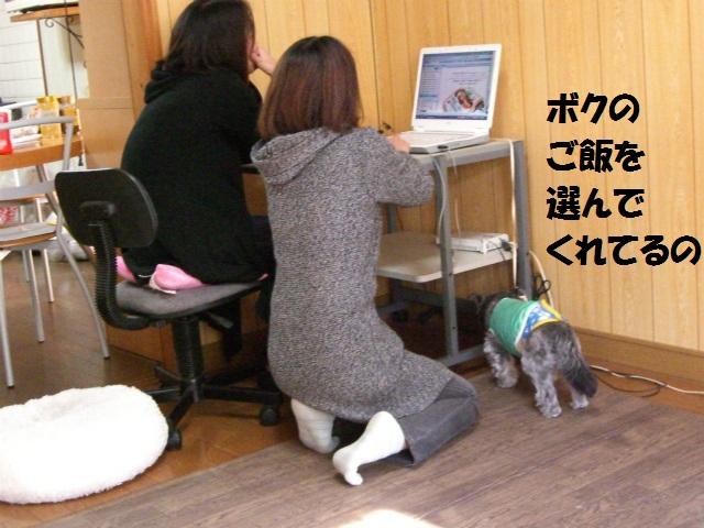 2012秋の信州 もみじ・星まつりの旅 092