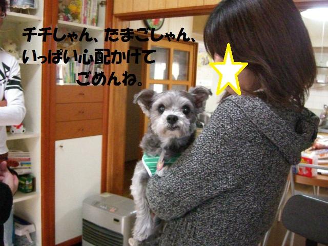 2012秋の信州 もみじ・星まつりの旅 113