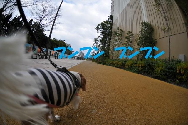 2012,12,16朝編 061