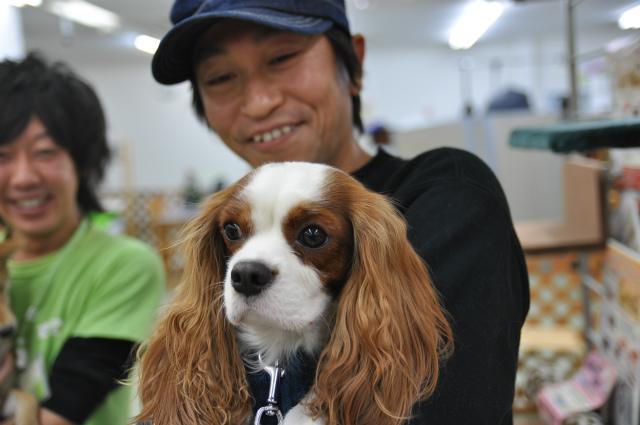 2012,12,16 ぼんちゃん宅へご訪問 060