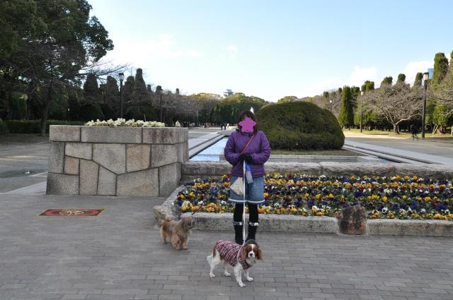 2013,02,16 大阪城公園 006