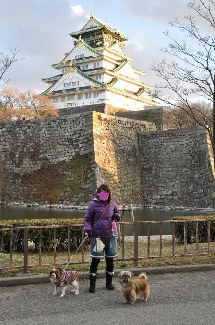 2013,02,16 大阪城公園 096