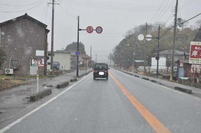 2013,02,23奥琵琶湖・敦賀 029