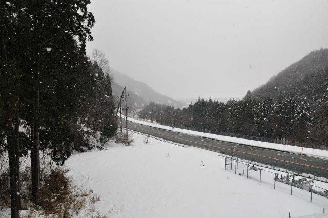 2013,02,23奥琵琶湖・敦賀 115