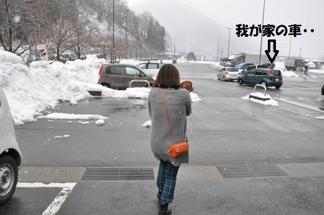2013,02,23奥琵琶湖・敦賀 132