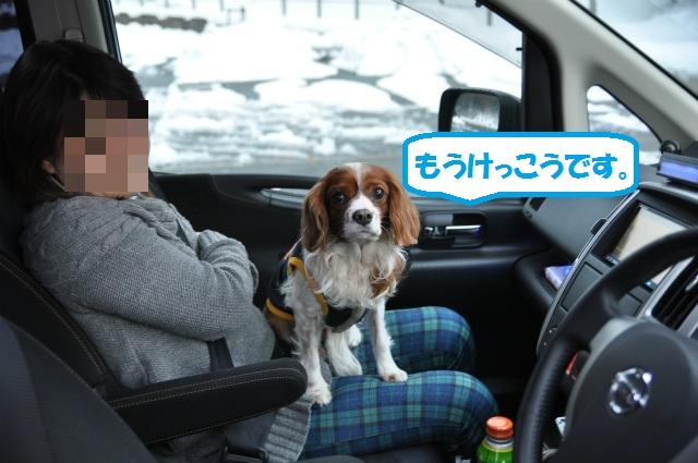 2013,02,23奥琵琶湖・敦賀 157