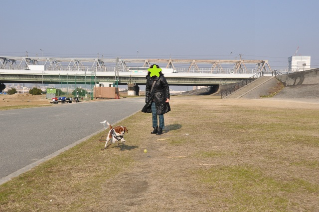 2013,03,06 淀川河川敷 036