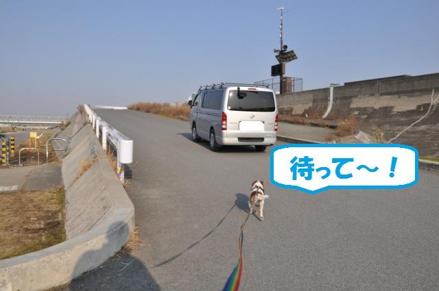 2013,03,06 淀川河川敷 056