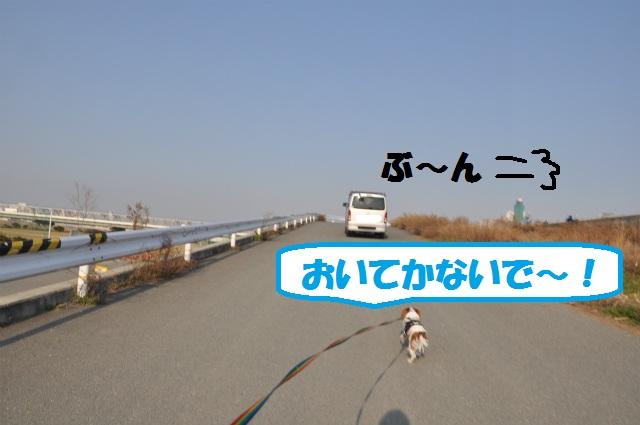 2013,03,06 淀川河川敷 059