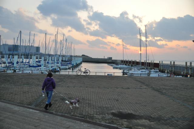 2013,03,02 初グルーミング・初散歩 143