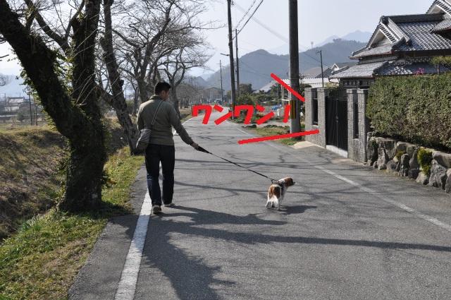 2013,03,09 但馬の旅 099