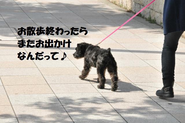 2013,03,16 ハッピーちゃんと 077