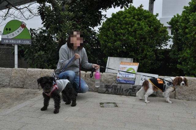 2013,03,20 天保山登頂 111